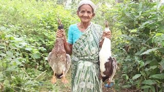 Download How To Cook Duck Curry My Grandma Village Style || Myna Street Food || Food Info Video