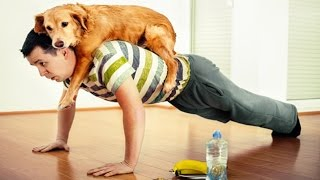 Download Amazing Dog Help the Owner Workout | So FUNNY! Video