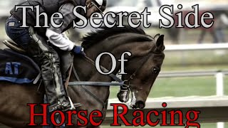 Download The Secret Side Of Horse Racing Video