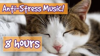 Download Songs for Nervous Cats! Soothing Music to Calm Your Hyperactive, Anxious Cat and Help with Sleep! 🐈 Video