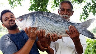 Download 10 kg Big Fish Recipe Cooking By Our Grandpa | Big Fish Curry Donating to Orphans Video