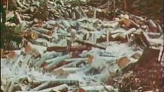 Download River Log Drive Video