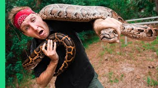 Download Catching and COOKING Florida's MOST Dangerous Killer! (HAND CAUGHT!!!) Video