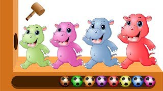 Download Colors Learn with XYLOPHONE Colorful Hippo Soccer Balls Finger Family Song for Kids Video