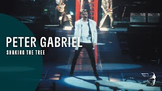 Download Peter Gabriel - Shaking The Tree (Secret World) ~ 1080p HD Video