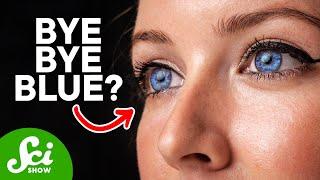 Download Are Blue Eyes Endangered? Video