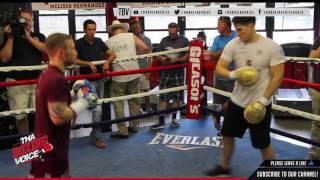 Download Carl Frampton Doing Pad Work in Preparation fo Leo Santa Cruz Video