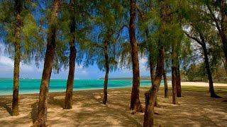 Download South of Eden Beachfront Villa in Riambel, Mauritius Video
