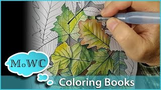 Download Coloring with Watercolor in Adult Coloring Books Video