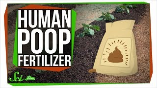 Download What Happens If You Use Your Feces as Fertilizer? Video