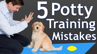 Download The 5 Most Common Potty Training Mistakes Video