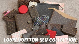 Download Louis Vuitton SLG Collection 2018   Minks4All Video