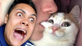 Download REACTING TO CUTE FUNNY CAT VIDEOS (TRY NOT TO SMILE) Video