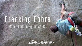 Download Cracking Cobra Video