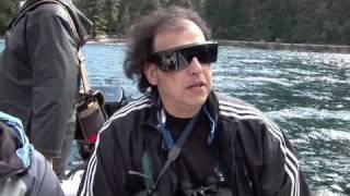 Download Cameron Lake Creature Video