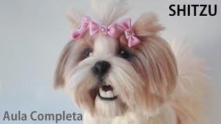 Download Aula Completa - Cachorro SHITZU Peludo em Porcelana Fria | Pasta Flexible Video