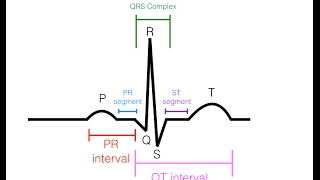 Download EKG/ECG Interpretation (Basic) : Easy and Simple! Video
