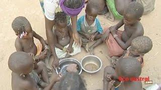Download La COI et la FAO s'attaquent à l'insécurité alimentaire Video