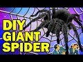 Download 🕷 DIY Giant Spider AKA Aragog AKA HARRY POTTER HALLOWEEN BIT*HES! Video