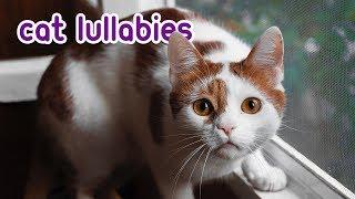 Download EXTRA-LONG CAT MUSIC - Relaxing Cat Lullabies! Video