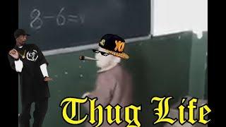 Download OS REIS DO THUG LIFE | THE KING OF THUG LIFE #31 Video