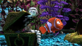 Download Pixar Summer Movies to Go Countdown - 12 Surprising Facts About Finding Nemo Video