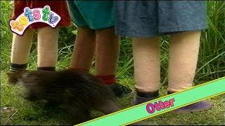 Download Tots TV: Otter (1995) Video