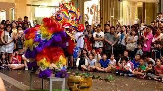 Download World Dragon & Lion Dance Day 2018 (Malaysia) Unicorn Dance - Chong Hwa 世界龙狮节 (马来西亚站) 中华华中《麒麟表演》 Video