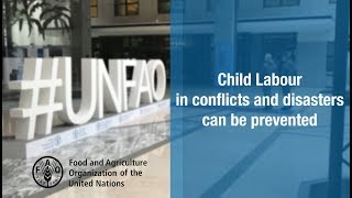 Download Preventing child labour in conflicts and disasters Video
