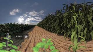Download NEW Seed Applied Solutions 360 Video Video
