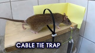 Download Cable Tie Rat/Mouse Trap Video