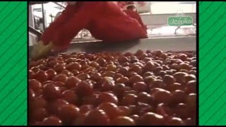 Download طريقة تصنيع معجون طماطم (صلصة) / How to manufacture tomato paste Video