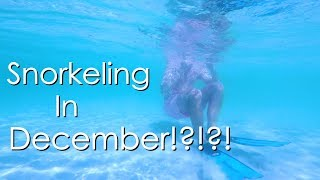 Download Are Holidays in a Foreign Country Better? - Walde Sailing ep.101 Video