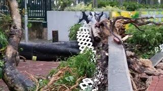 Download Saat (Topan )Typhoon Mangkhut +10 Di Hong Kong Video