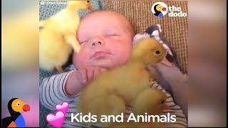 Download Kids and Animals LOVE Each Other Compilation   The Dodo Video