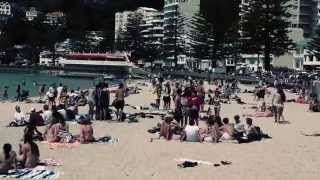 Download Best Things To Do In ONE Day In Wellington (New Zealand) Video