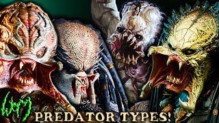 Download Every Type of PREDATOR - YAUTJA Video
