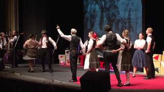 Download Drietoma jazz - traditionally untraditional | Nadšenci - a folk dance group | TEDxTrencin Video