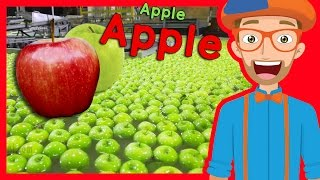 Download Fruit for Kids with Blippi | Apple Fruit Factory Tour Video