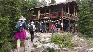 Download High Tea in Banff National Park Video