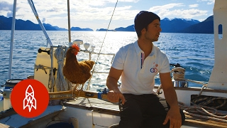 Download Sailing Solo Around the World … with a Pet Chicken Video