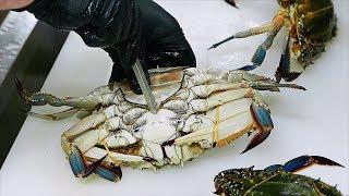 Download Japanese Food - RED LOBSTER Scorpion Crabs Blue Crab Sashimi Teruzushi Japan Video