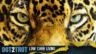 Download Dot's Carnivore Challenge Video