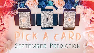 Download Pick A Card | What's coming in September Video