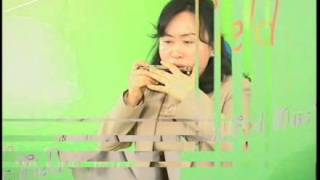 Download [뮤직필드] 동백아가씨 - 서연희 하모니카 연주 Video