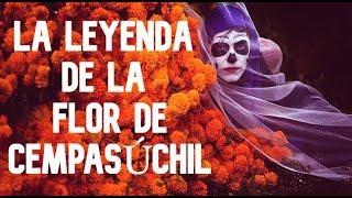 Download La Leyenda de la Flor de Cempasúchil Video