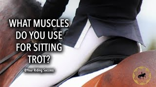 Download What Leg Muscles Do You Use For Sitting Trot? - Dressage Mastery TV Ep220 Video