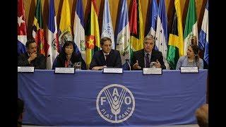 Download Sistemas Alimentarios y Desigualdad: soluciones para América Latina y el Caribe de cara a los ODS Video