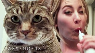 Download Cat Lady Gets Trapped With No Internet For 90 Hours // Sponsored By Passengers Movie Video