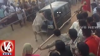 Download Bull Fight In Chitoor | Two Bulls Die | Police Enter | V6 News Video